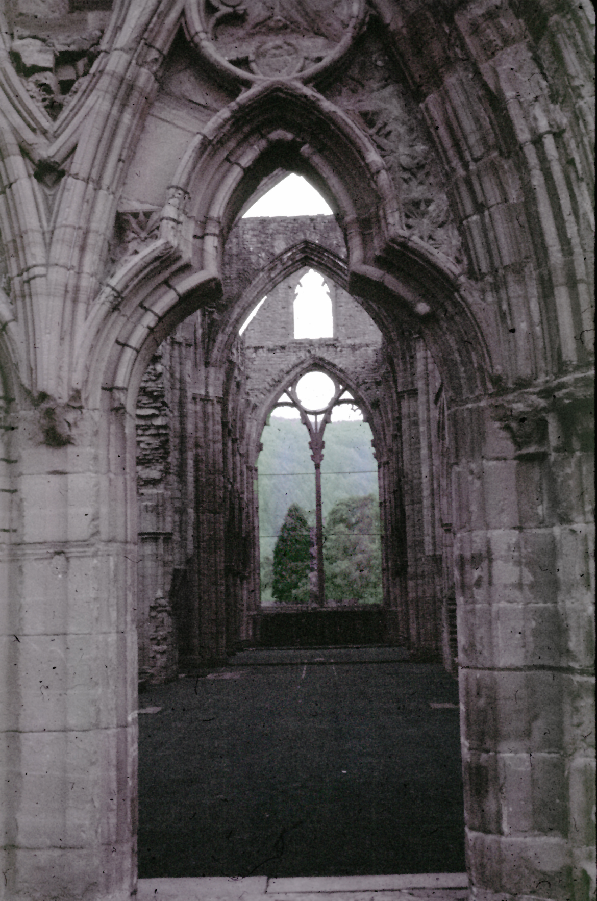 "comparison of tintern abbey and frost at midnight English 221: british literature 1800-present ""frost at midnight"": this poem asks for a direct comparison with ""tintern abbey"": what."